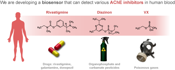 biosensors-AChE-inhibitors-graphical-abstract